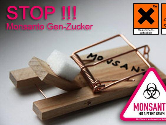 monsanto gen zucker in den usa verboten soll in deutschland erlaubt werden freidenkertv. Black Bedroom Furniture Sets. Home Design Ideas